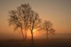 De zon wint aan kracht