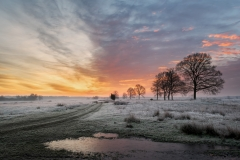 Een schitterende zonsopkomst boven het Dwingelderveld